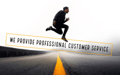 WE PROVIDE PROFESSIONAL CUSTOMER SERVICE
